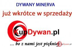 Dywan MINERVA