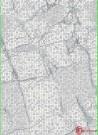 Dywan Zara